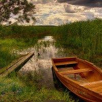 У озера :: Мария Богуславская
