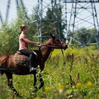 Непослушный конь. :: Владимир Безбородов