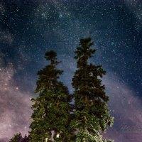 Ночь в горах :: Александр Криулин