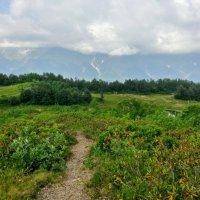 Дорога к озеру Зеркальному :: Tata Wolf