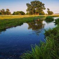 Малые реки России :: Любовь Потеряхина