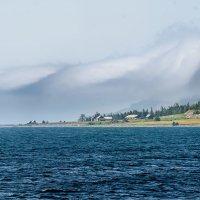 Там за туманами :: Владимир Гришин
