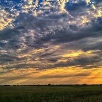 Закат в поле :: Сергей Форос