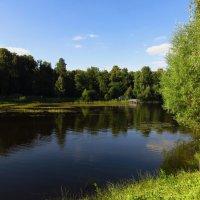 Еще один по-настоящему летний день :: Андрей Лукьянов