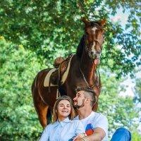 Конь еще тот конь! :: Юнона шиманская