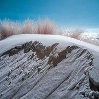 Осыпающася дюна у Северного моря. Лето. IR :: Игорь Сигов