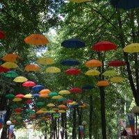 Летние зонтики :: Anton Сараев