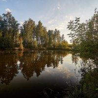 img_8727 :: Сергей Козлов