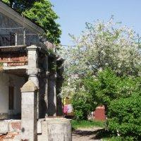 Старый дворик :: Сергей Землянский