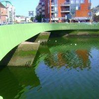Зеленый мост на зеленой реке Ли :: Марина Домосилецкая