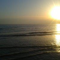 Залив на закате :: Сапсан