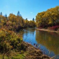 Осень на реке :: Анатолий Иргл