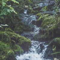 Вода падает :: Иван Пархутов