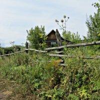 Заброшенный дом :: наталия