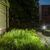 In the dusk :: Дмитрий Костоусов