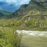 Зеленая речка перед дождем :: M Marikfoto
