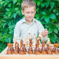 Шахматы всегда со мной :: Светлана