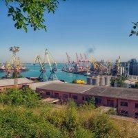 Июльское утро над Одесским портом. :: Вахтанг Хантадзе