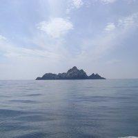 Ирландский остров Большой Скеллиг :: Марина Домосилецкая