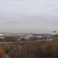 Вид с обзорной площадки на Воробьевых горах :: Анна Воробьева