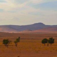 Неподалеку от Сахары :: Роберт Гресь