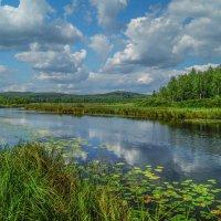 Август на реке :: Александр Смирнов