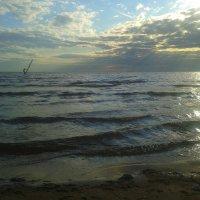 Залив :: Сапсан