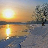 Солнце над Десной :: Дубовцев Евгений