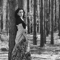В лесу :: Лала Баймукашева