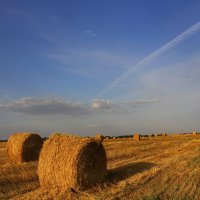 Август на закате :: оксана косатенко