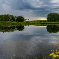 Тишина перед грозой... :: Владимир Деньгуб