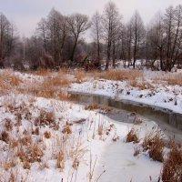 зимняя речка :: Александр Прокудин