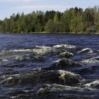 Пороги на реке Вуоксе :: Владимир Максимов