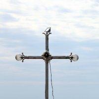 Вокруг храма Святителя Николая в Малореченском :: Ирина Фирсова
