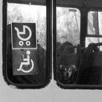 Я твой транзитный пассажир... :: Татьяна Копосова