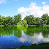 Парковое озеро и окрестности в августе радуют утренней свежестью и насыщенностья красок :: Маргарита Батырева