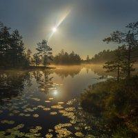 Полнолуние на озере :: Фёдор. Лашков