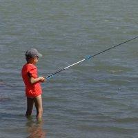 Ловись рыбка большая и ещё больше... :: Николай Саржанов