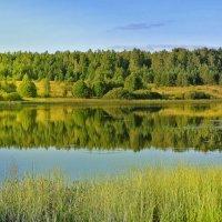 Скоро осень..за окнами август... :: Алла Кочергина