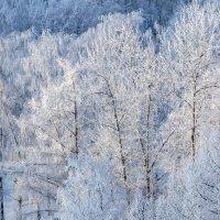 Московская зима. :: Сергей Филатов