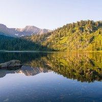 Озеро. Утренний свет :: Андрей Поляков