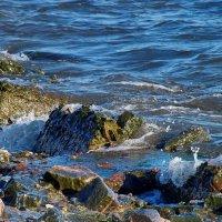 Морские камушки! :: Наталья