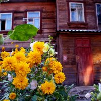 старый дворик :: Наталья Сазонова