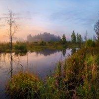 Лесной замок :: Фёдор. Лашков