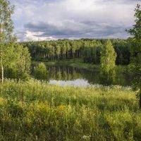 На лесном озере :: Лариса Березуцкая