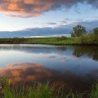 Вечерний пейзаж на речке :: Александр Синдерёв