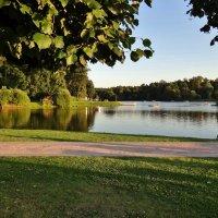 отдых в парке :: Валентина. .