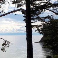 Байкал с тропы :: Наталья Тимофеева
