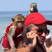 Продавец фотоуслуг с животными :: Vladimir Perminoff