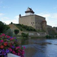 Нарвский замок - Замок Германа :: Елена Павлова (Смолова)